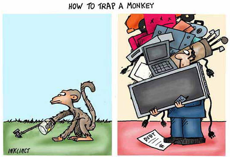 2012-528--how-to-trap-a-monkey